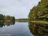 fall foliage drive to sunday river newry maine (23)