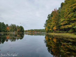 fall foliage drive to sunday river newry maine (23)