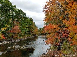 maine fall foliage (2)